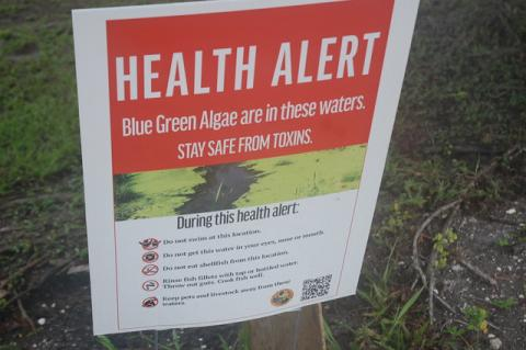 The Florida Department of Health in Seminole County has issued blue-green algae alerts for Lake Monroe, pictured here, Lake Jesup and Lake Howell. The algae can grow cyanotoxins that can be harmful to humans.